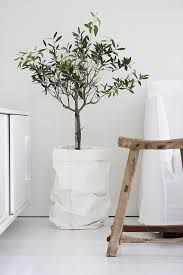 Image result for paper bag planters