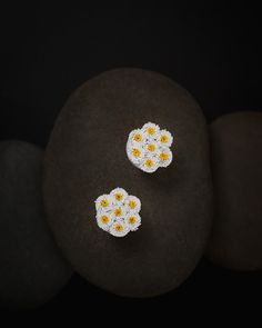 Paper Quilling Earrings, Daisy, Yellow, Color, Margarita Flower, Colour, Daisies, Colors