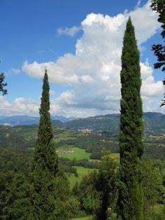 Un bellissimo paesaggio collinare...  #fotopaesaggi , #photo , #alberi  , #nikon