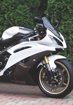 SuperBike Yamaha R6, Biker Quotes, Motorcycle Types, Sportbikes, Future Car, Bike Life, Cars And Motorcycles, Motorbikes, Vehicles