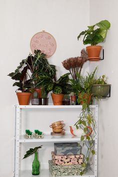 Stay surrounded by plants and flowers, it provides a healthy well-being. Studies say that plants make people happier and that plants purify the air. Flower Planters, Planter Pots, Slow Food, Slow Living, Urban Farming, Most Beautiful Pictures, Ladder Decor, Teak, Small Spaces