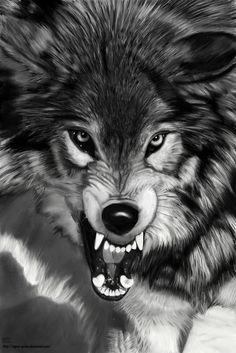 Wolf by agnes-green.deviantart.com on @deviantART