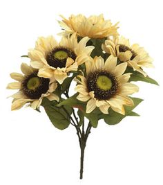 Blooming Autumn 20'' Sunflower Bush-Cream