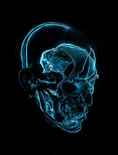 Artificial Anatomy 2 on Behance by Paul Hollingworth