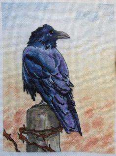 Cross Stitch Bird, Simple Cross Stitch, Cross Stitch Animals, Cross Stitch Flowers, Cross Stitch Charts, Counted Cross Stitch Patterns, Cross Stitching, Cross Stitch Embroidery, Embroidered Bird