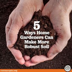 Grow your soil! One of the keys to strong plants and excellent produce is healthy soil. Rodale's Organic Life offers some helpful tips to improve your soil. Garden Soil, Compost, Organic Gardening, Helpful Hints, Improve Yourself, Keys, Healthy, Strong, Plants