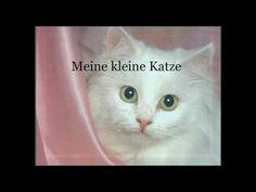 ▶ Meine Kleine Katze - Deutsches Katzen Kinderlied - German Cat Children Song - YouTube