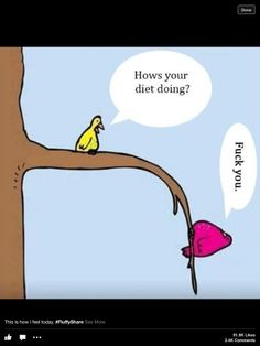 how's your diet going?