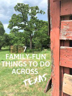 7 Family-Fun Things To Do Across Texas Texas Roadtrip, Texas Travel, Fort Worth Stock Show, Family Games To Play, Orlando Parks, States In America, Family Events, Sea World, Disney Trips