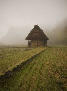 Foggy Shirakawa-go