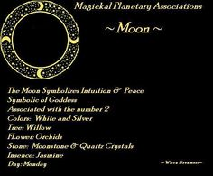 Calendar of the Moon for Monday 5 Chant: We all come from the Goddess, and to Her we shall return, Like a drop of rain, flowing to the ocean. Astrology Planets, Astrology Zodiac, Moon Monday, Wiccan Witch, Witchcraft, Wise One, Moon Witch, Chinese Astrology, Star Wars