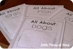 Nonfiction all about books, opinion writing, list writing, diary templates, & more!  Work on Writing: Part Two