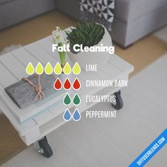Fall Cleaning - Essential Oil Diffuser Blend