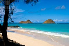 Bellows Beach, Oahu HI  Soft breaking waves and creamy sand, one of the best beaches!