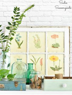Botanical Decor or Natural Home Decor with Upcycling and Thrifted Decor - Upcycling ideas and thrift shopping tips for Botanical decor or botanical wall art - Botanical Decor, Botanical Wall Art, Botanical Prints, Vibeke Design, Funky Junk Interiors, Store Interiors, Vintage Windows, Antique Windows, Calming Colors
