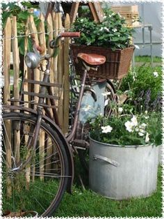 I've always loved the idea of having a bike to ride down main street and the basket is adorable!