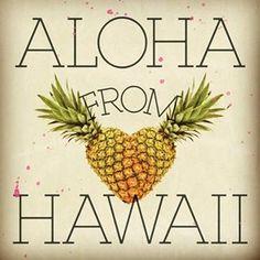 Aloha from Hawaii! Thank you for sending this to me Dana! Island Girl, Big Island, Maui, Kauai Hawaii, Mahalo Hawaii, All About Hawaii, I Need Vitamin Sea, Hawaii Homes, Hawaiian Islands