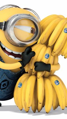 2014 Happy Despicable Me minion with lots of bananas iphone 6 wallpaper - smile, yellow Happy Despicable Me, Minions Despicable Me, My Minion, Minion Rush, Minion Banana, Minion Jokes, Minions Quotes, Minion Halloween, Minion Party