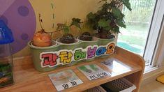 평가인증3차 환경구성ㅡ만2세 : 네이버 블로그 Planter Pots, Classroom, Deco, Class Room, Decoration, Deko, Decor, Dekoration, Interiors