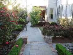 (Border of pavers around tiles or concrete) Residential Landscape Projects - traditional - landscape - new orleans - Landscape Images Ltd