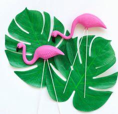 1a8e33101c 19 Best Fun Flamingo Party images