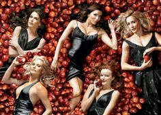 "Desperate Housewives. ""I love you once, I love you twice, I love you more than beans and rice"""