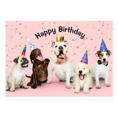 Shop Happy Birthday Postcard created by Happy_Shopping. Happy Birthday Animals, Happy Birthday Wishes For A Friend, Happy Birthday Wishes Images, Happy Birthday Girls, Happy Birthday Meme, Happy 1st Birthdays, Animal Birthday, Birthday Fun, Birthday Greetings