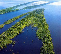 Amazônia Azul: um oceano tão rico quanto a amazônia verde.
