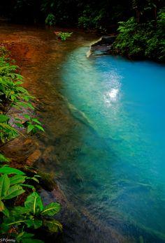 ✯ Rio Celelste - Tenorio Volcano National Park - Costa Rica