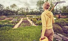 Gardening is the best medicine for the mind, says the Guardian