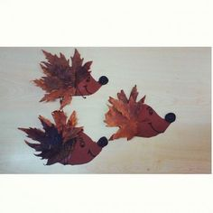 leaf hedgehogs craft 42 best autumn craft idea for images on 2316