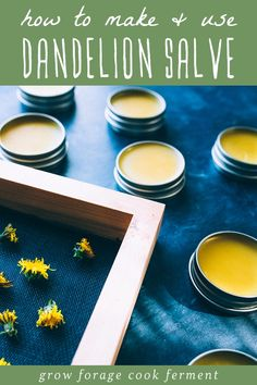 Learn how to make this dandelion salve recipe using foraged dandelions! This homemade herbal salve is especially good for sore muscles, joints, and dry skin. Dandelion Uses, Dandelion Recipes, Recipe For 4, Recipe Using, Salve Recipes, Holistic Treatment, Herbs For Health, Herbal Oil