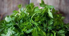 ΑΥΤΟ ΤΟ ΒΟΤΑΝΟ ΚΑΝΕΙ ΘΑΥΜΑΤΑ ΚΑΙ ΔΕΝ ΤΟ ΞΕΡΑΤΕ: Δείτε ποιο είναι και από τι θεραπεύει! Remedies, Herbs, Health, Food, Life, Health Care, Home Remedies, Eten, Herb