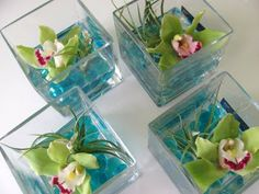Party Flowers - Orchids and Air Plants