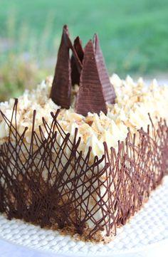 Coconut Almond Chocolate Cake