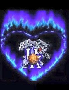 photos of university of kentucky wildcats Kentucky Wildcats Football, Kentucky College Basketball, Uk Wildcats Basketball, Kentucky Sports, Kentucky Derby, Kentucky Girls, Basketball Camps, Uk Football, Basketball Players