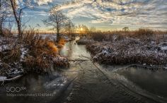 Sunrise by Mihail_K. Please Like http://fb.me/go4photos and Follow @go4fotos Thank You. :-)