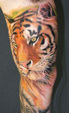 Have always loved tigers.