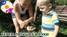 Поймали лягушку на газоне. Изучаем лягушку. Берем лягушку в руки. Caught...