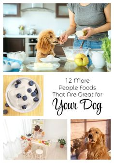 12 More People Foods That Are Great For Your Dog Dog Nutrition, Animal Nutrition, Dog Safety, Dog Owners, Dog Mom, Safe Food, Puppy Love, Best Dogs, Dog Food Recipes