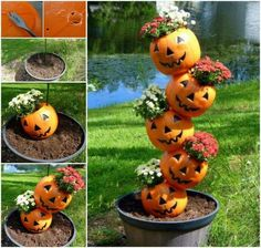 Take your tipsy pot garden to a new level with this cute halloween tipsy pot idea, instead of using clay pots, drill holes in plastic pumpkins and fill them with fall mums. Turn the pumpkins around to hide the jack-o-lantern face to last through fall. Holidays Halloween, Halloween Crafts, Halloween Decorations, Happy Halloween, Halloween Halloween, Outdoor Decorations, Halloween Garden Ideas, Halloween Makeup, Halloween Buckets