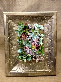 """love: """"Vertical Living Succulent Wall Hanging or Table Top in Silvery Gold Painted Wood Frame"""""""