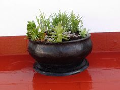 Small planter.