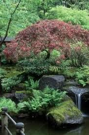 Image result for cottage garden water features