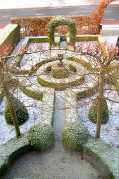 Garden illustrating the importance of structural planting even in the depths of Winter.