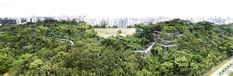 Alexandra Arch & Forest Walk by LOOK Architects