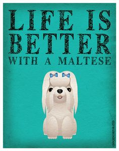 Life is Better with a Maltese Art Print 11x14  by DogsIncorporated, $29.00