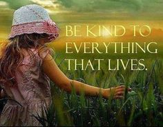 Be kind to everything that lives ..*