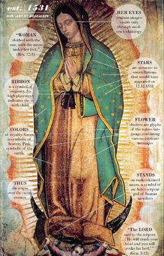 """by-grace-of-god: """" To this date, the Image of Our Lady of Guadalupe cannot be explained by science. The image shows no sign of deterioration after 450 years! The tilma or cloak of Saint Juan Diego on which the image of Our Lady has been imprinted,. Catholic Prayers, Catholic Art, Catholic Saints, Religious Art, Catholic Holidays, Catholic Traditions, Catholic Online, Blessed Mother Mary, Blessed Virgin Mary"""