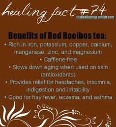 Tea Benefits Rooibus The Health Benefits of Drinking Tea - Red Tea Is Best Tea Benefits, Health Benefits, Healthy Tips, Healthy Choices, Healthy Foods, Healthy Drinks, Red Rooibos Tea, Cuppa Tea, My Tea